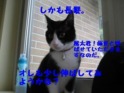 IMG_5651.jpg