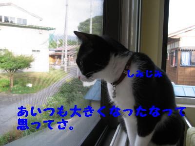IMG_5739.jpg