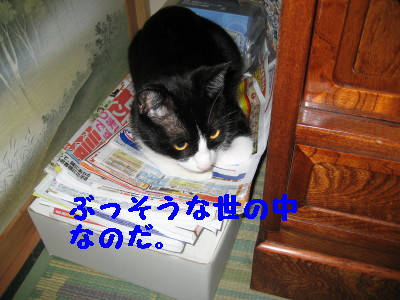 IMG_5980.jpg