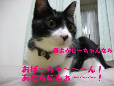 IMG_6024.jpg
