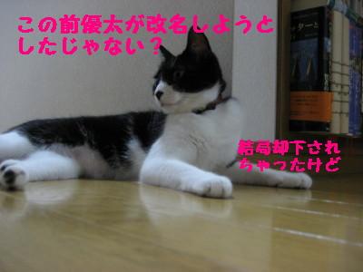 IMG_6076.jpg