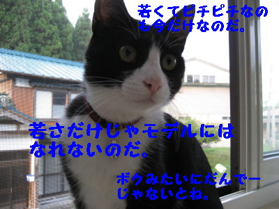 IMG_6163.jpg