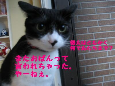 IMG_6180.jpg