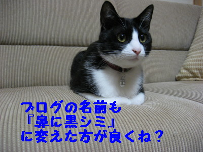 IMG_6235.jpg