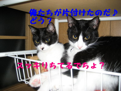 IMG_6388.jpg