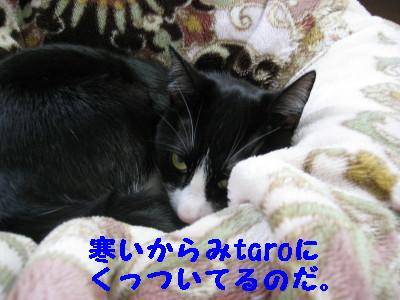 IMG_6567.jpg