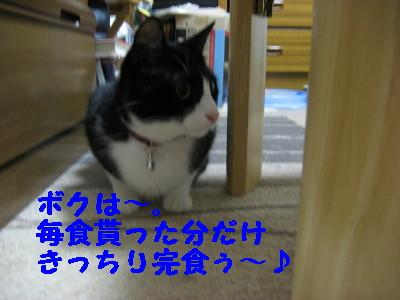 IMG_6637.jpg
