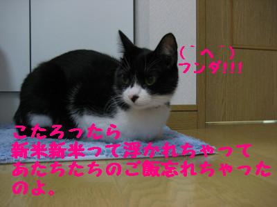 IMG_7077.jpg
