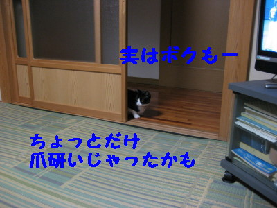 IMG_7099.jpg