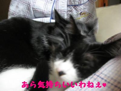 IMG_7112.jpg
