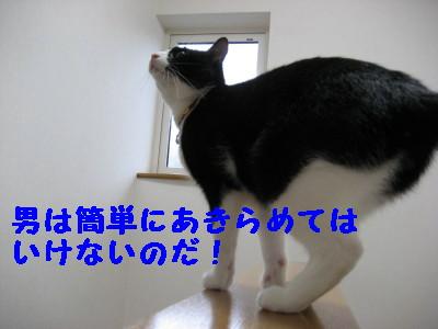 IMG_7143.jpg