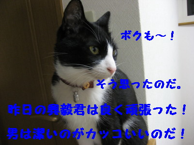IMG_7324.jpg