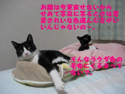 IMG_7715.jpg