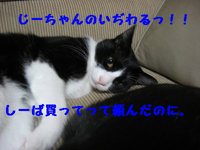 IMG_7785.jpg