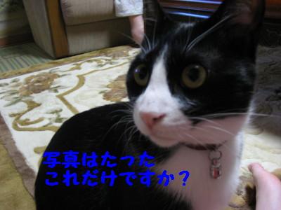 IMG_7875.jpg