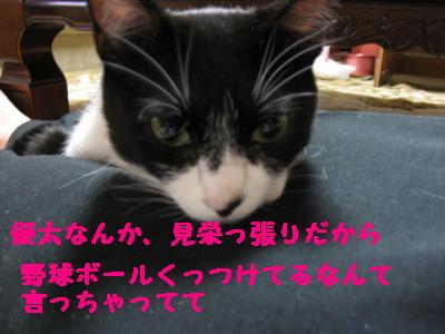 IMG_7987.jpg