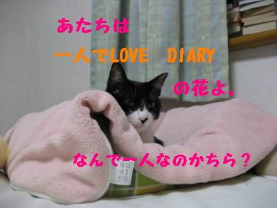 IMG_8127.jpg