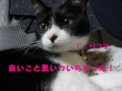 IMG_8359.jpg