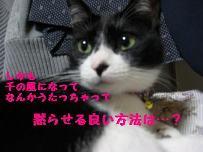 IMG_8360.jpg
