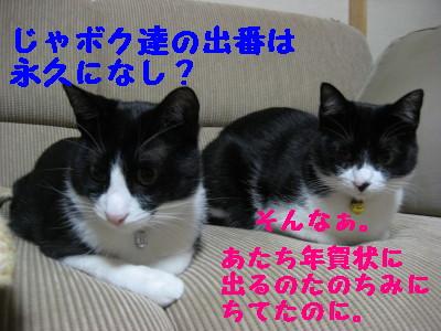 IMG_8363.jpg