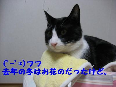 IMG_8492.jpg