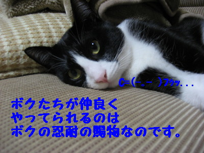 IMG_8662.jpg