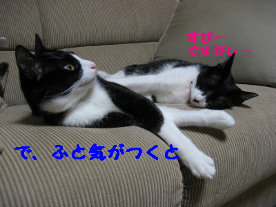 IMG_8717.jpg