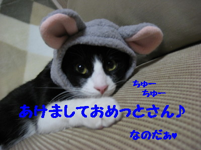 IMG_8869.jpg