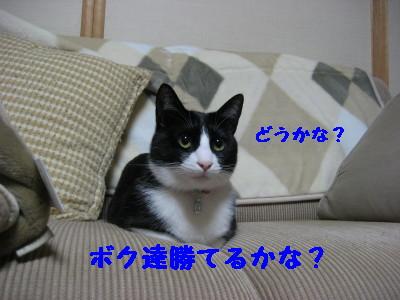 IMG_9249.jpg