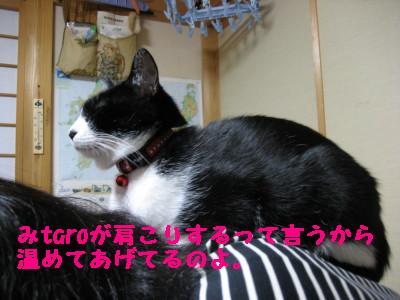 IMG_9269.jpg