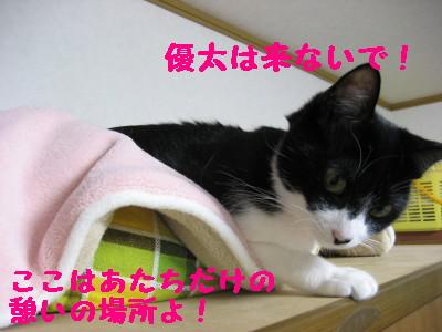 IMG_9337.jpg