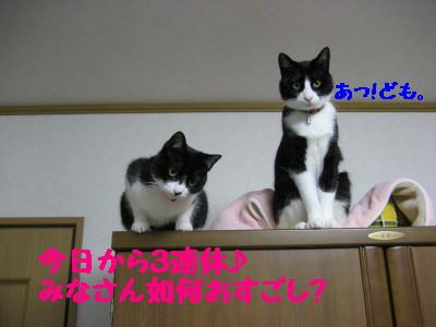 IMG_9573.jpg