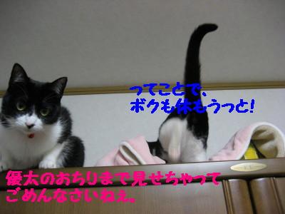 IMG_9578.jpg
