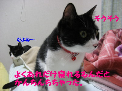 IMG_9893.jpg