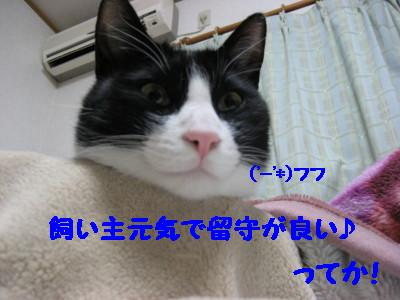 IMG_9911.jpg