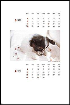 ワンワンカレンダー ルウ