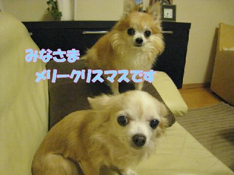 IMG_0662-1.jpg
