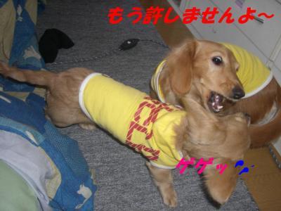20070115163743.jpg