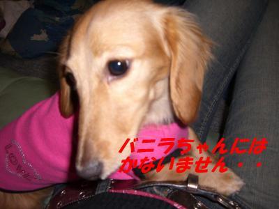 20070212001552.jpg