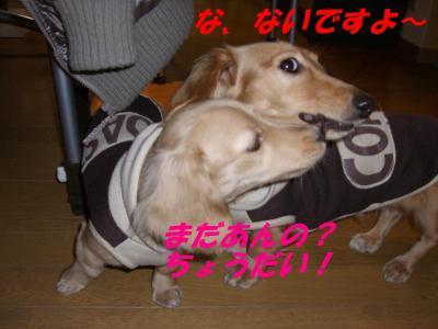 20070214135911.jpg