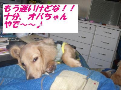 20070313003833.jpg