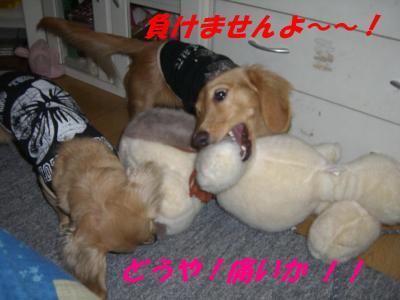 20070320233042.jpg