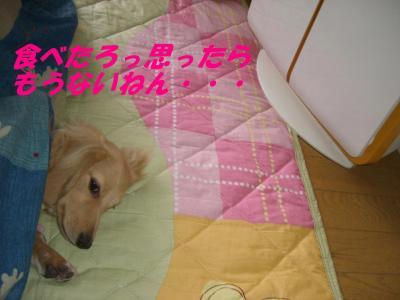 20070426212516.jpg