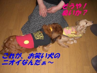 20070503223135.jpg