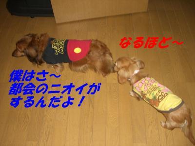20070503223356.jpg