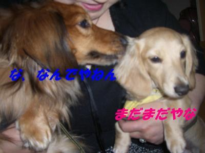 20070503224005.jpg