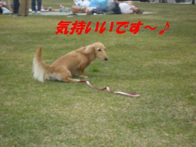 20070507235912.jpg
