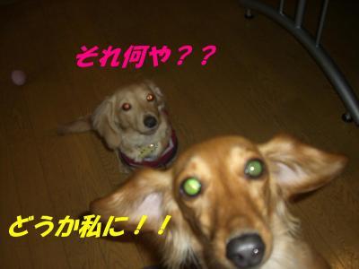 20070521183209.jpg