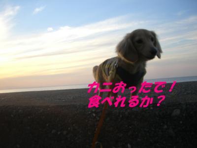 20070618170522.jpg