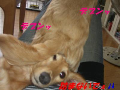 20070625204611.jpg